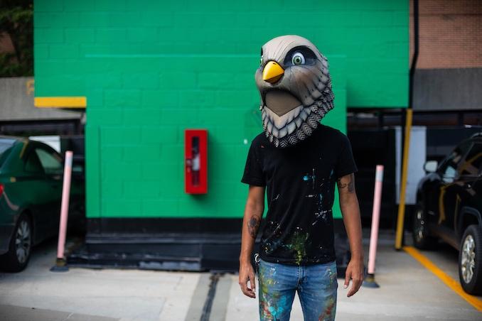 birdO by Joel Levy Photography