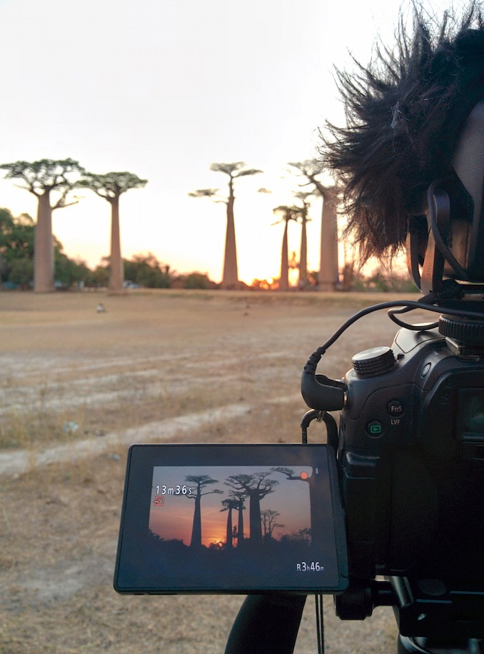 Filming sunset through the baobabs in Madagascar