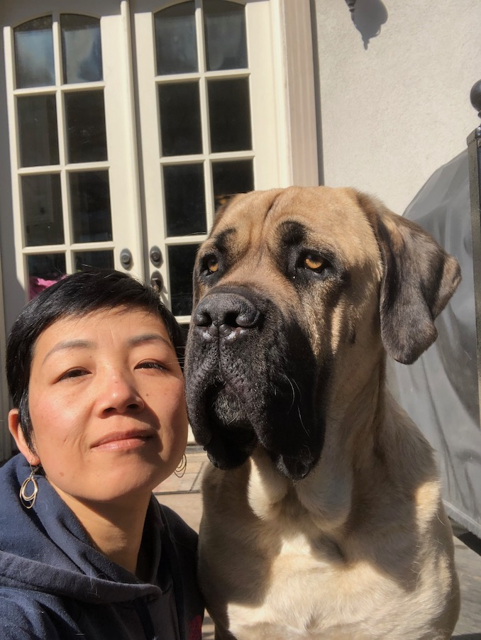 Xin Wang - With my Cane Corso