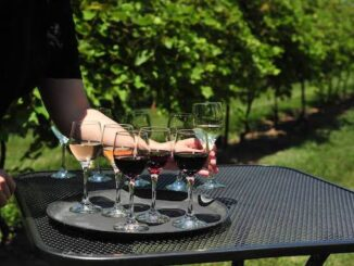 Escape to Huron Shores: Visiting One of Ontario's Emerging Wine Regions